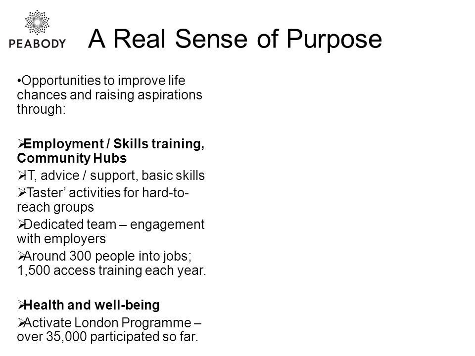 A Real Sense of Purpose Opportunities to improve life chances and raising aspirations through:  Employment / Skills training, Community Hubs  IT, advice / support, basic skills  'Taster' activities for hard-to- reach groups  Dedicated team – engagement with employers  Around 300 people into jobs; 1,500 access training each year.