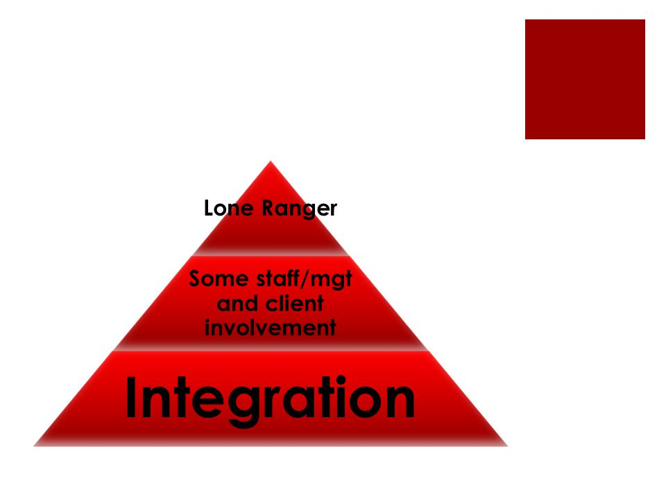 Lone Ranger Some staff/mgt and client involvement Integration