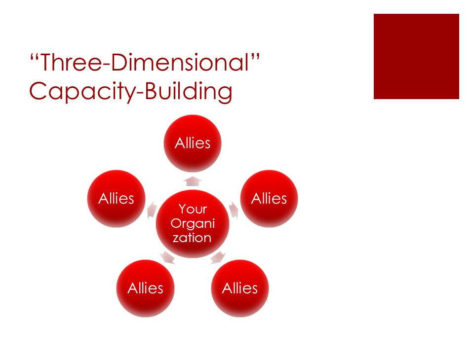 Three-Dimensional Capacity-Building Your Organi zation Allies