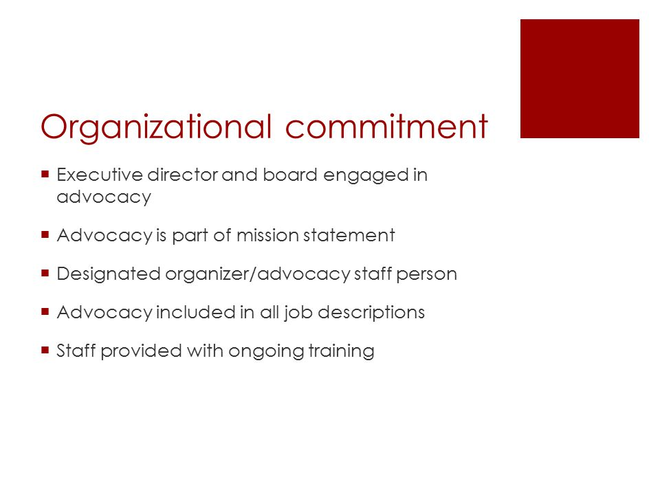 Organizational commitment  Executive director and board engaged in advocacy  Advocacy is part of mission statement  Designated organizer/advocacy staff person  Advocacy included in all job descriptions  Staff provided with ongoing training