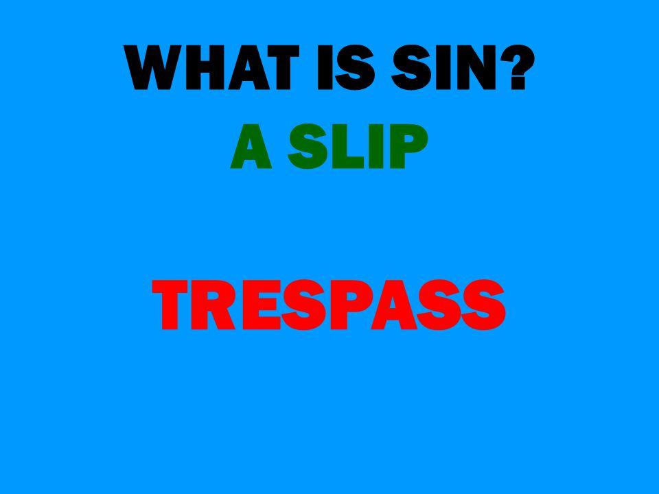 WHAT IS SIN? A SLIP TRESPASS