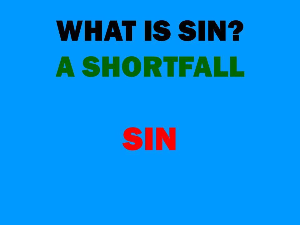 WHAT IS SIN? A SHORTFALL SIN