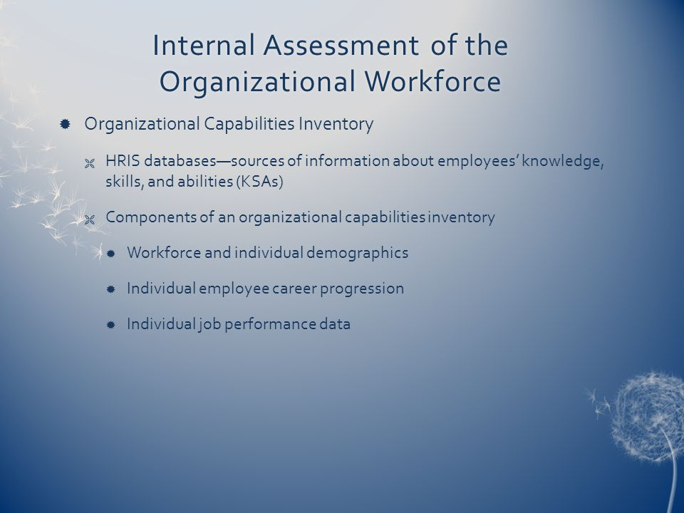Internal Assessment of the Organizational Workforce  Organizational Capabilities Inventory  HRIS databases—sources of information about employees' knowledge, skills, and abilities (KSAs)  Components of an organizational capabilities inventory  Workforce and individual demographics  Individual employee career progression  Individual job performance data