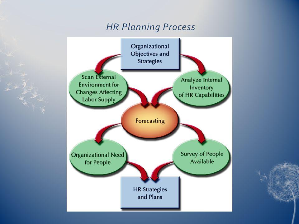 HR Planning Process HR Planning Process