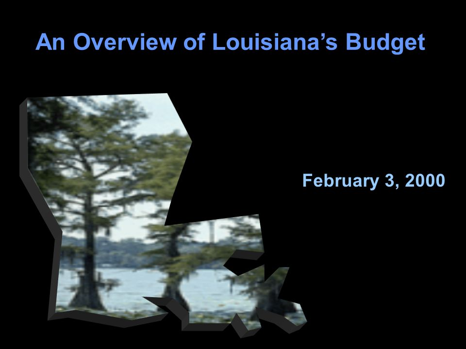 78 An Overview of Louisiana's Budget February 3, 2000