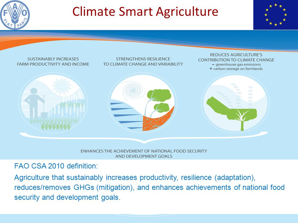 FAO CSA 2010 definition: Agriculture that sustainably increases productivity, resilience (adaptation), reduces/removes GHGs (mitigation), and enhances