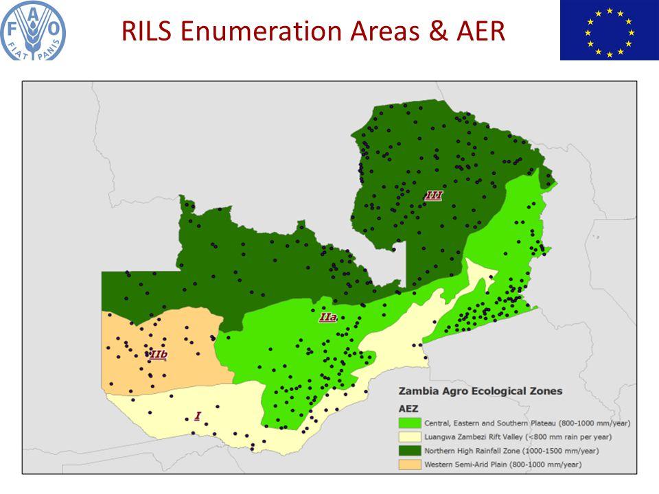 RILS Enumeration Areas & AER