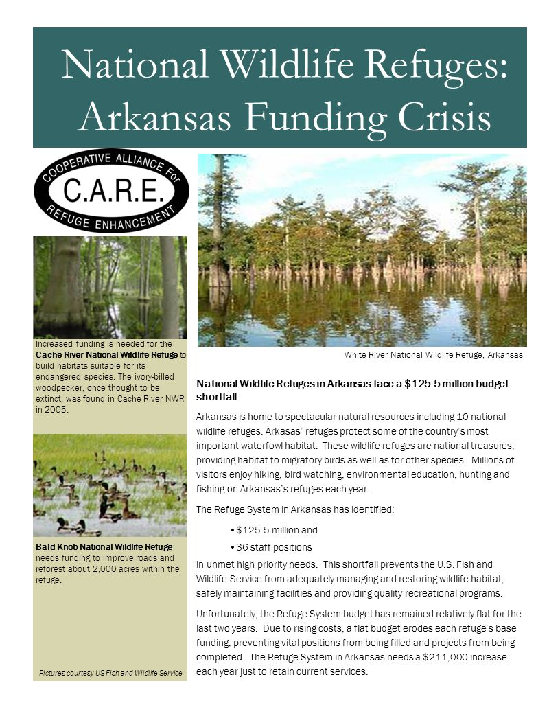 National Wildlife Refuges in Arkansas face a $125.5 million budget shortfall Arkansas is home to spectacular natural resources including 10 national wildlife refuges.