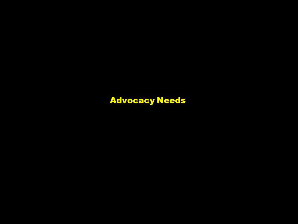 NY-070626.001/020419VtsimSL001 2 Advocacy Needs