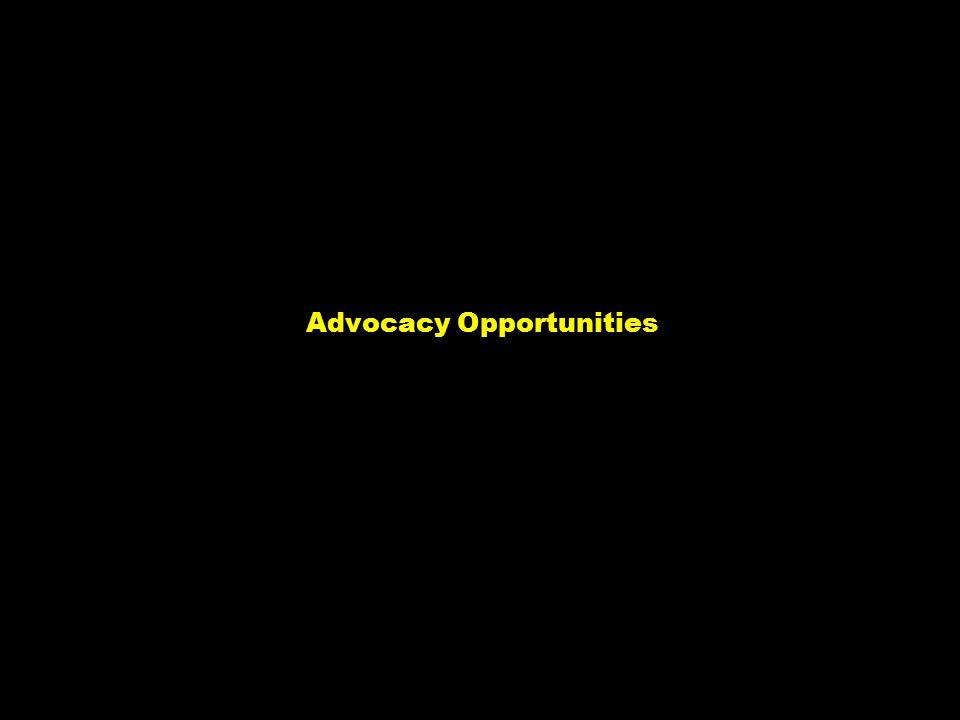 NY-070626.001/020419VtsimSL001 5 Advocacy Opportunities