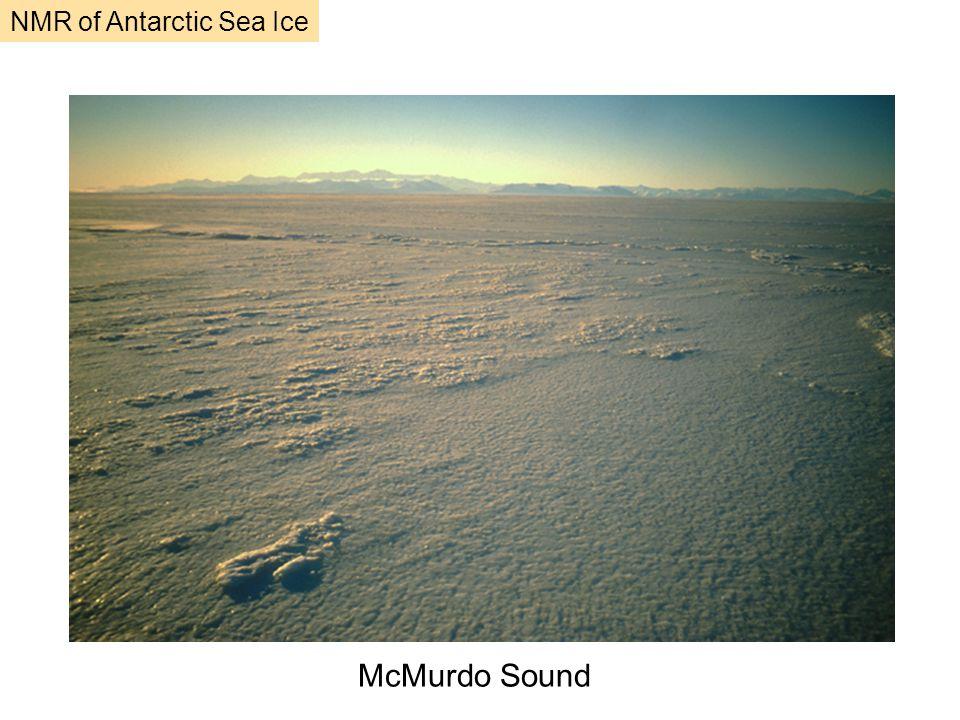 McMurdo Sound NMR of Antarctic Sea Ice