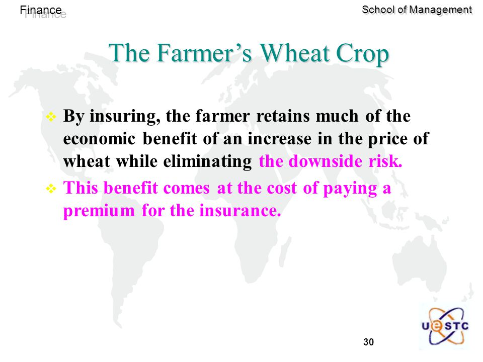 30 Finance School of Management The Farmer's Wheat Crop  By insuring, the farmer retains much of the economic benefit of an increase in the price of wheat while eliminating the downside risk.
