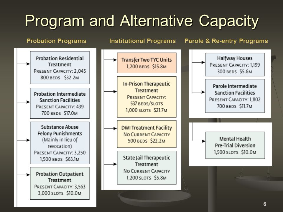 6 Program and Alternative Capacity Probation ProgramsInstitutional ProgramsParole & Re-entry Programs