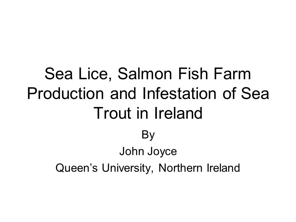 Sea Lice, Salmon Fish Farm Production and Infestation of Sea Trout in Ireland By John Joyce Queen's University, Northern Ireland