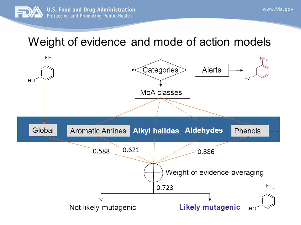 Weight of evidence and mode of action models MoA classes Aldehydes PhenolsAromatic AminesAlkyl halides Global Not likely mutagenic Categories Likely m