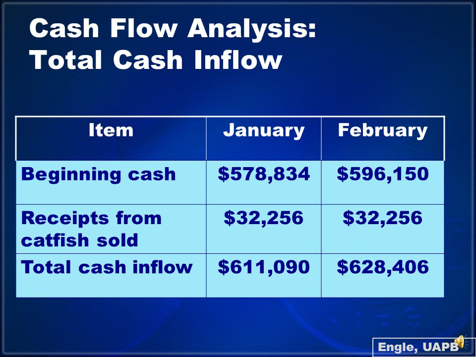Cash Flow Analysis: Sructure ItemJanuaryFebruary Beginning cash$578,834$596,150 Total cash outflow$14,940$50,848 Cash available$596,150$577,548 New borrowing00 Ending cash balance$596,150$577,548 Engle, UAPB