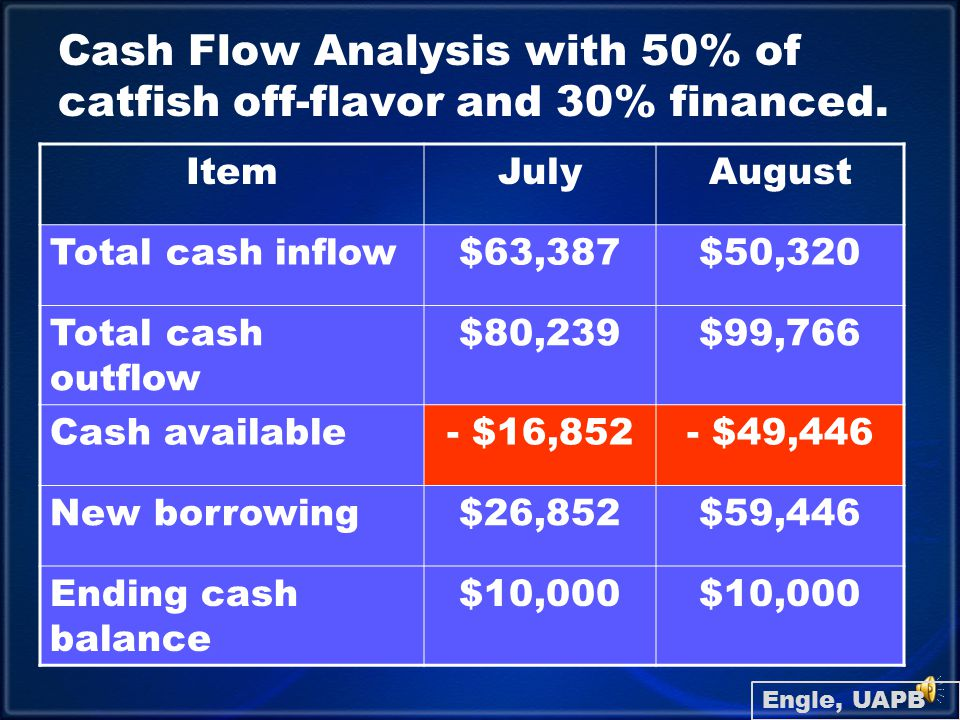 Cash Flow Analysis: Summary of Debt Outstanding ItemJanuaryFebruary Real estate00 Equipment00 Operating00 Engle, UAPB