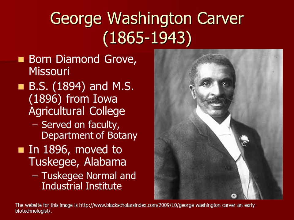 George Washington Carver (1865-1943) Born Diamond Grove, Missouri B.S. (1894) and M.S. (1896) from Iowa Agricultural College – –Served on faculty, Dep