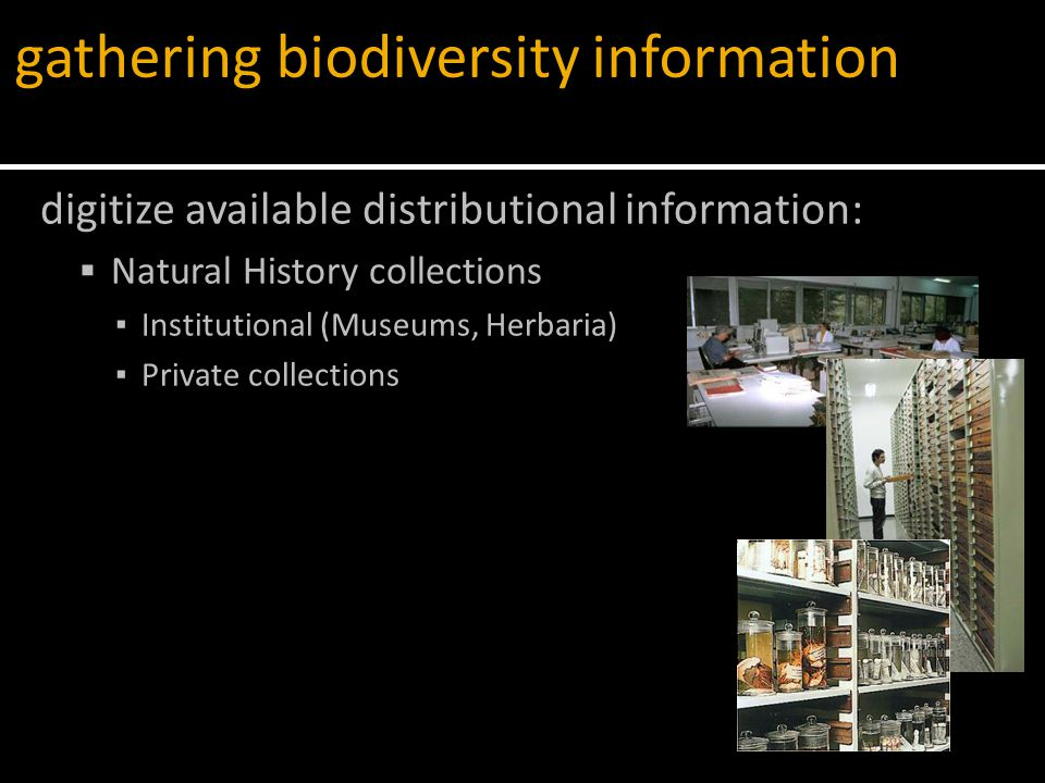 digitize available distributional information:  Natural History collections ▪ Institutional (Museums, Herbaria) ▪ Private collections gathering biodiversity information