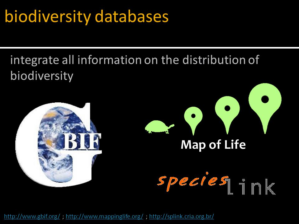 Adequate distribution data is lacking for many of the known species and higher taxa (Lomolino 2004) Whittaker et al.