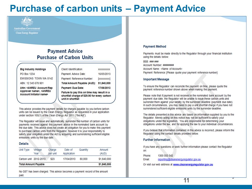 Page 11 Purchase of carbon units – Payment Advice 11