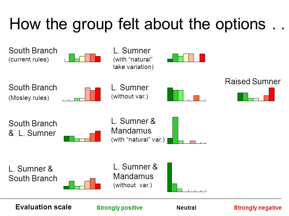 "How the group felt about the options.. South Branch (current rules) Strongly positiveStrongly negativeNeutral L. Sumner (with ""natural"" lake variation"