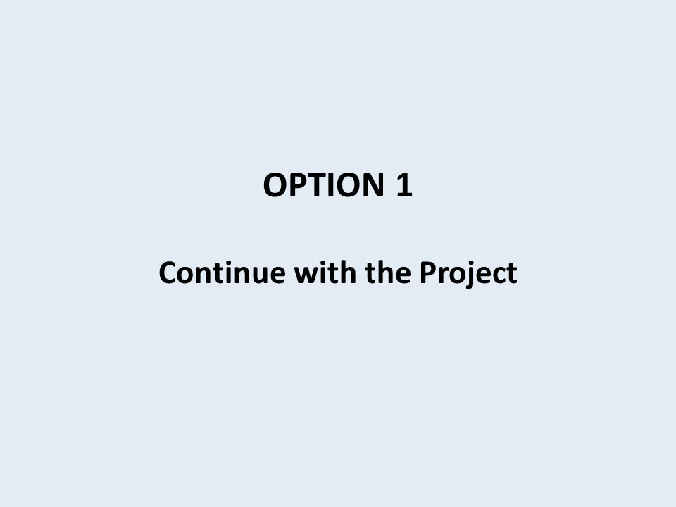OPTION 1 Continue with the Project
