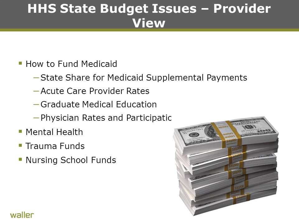 HHS State Budget Issues – Provider View  How to Fund Medicaid – State Share for Medicaid Supplemental Payments – Acute Care Provider Rates – Graduate Medical Education – Physician Rates and Participation  Mental Health  Trauma Funds  Nursing School Funds