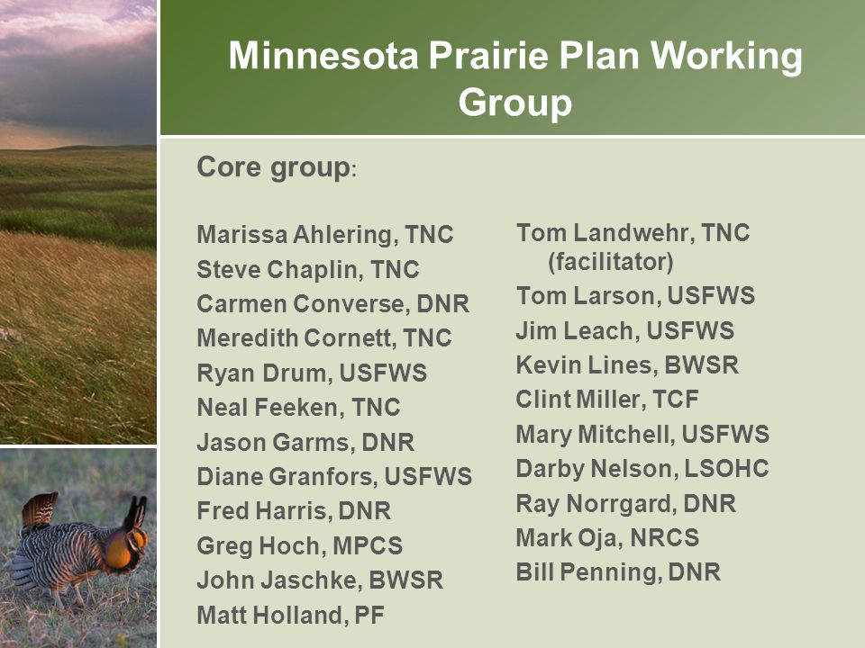 Minnesota's Prairie Region 24.9 million acres Includes the Prairie and Forest-Prairie Transition Planning Sections employed by the Lessard- Sams Outdoors Heritage Council