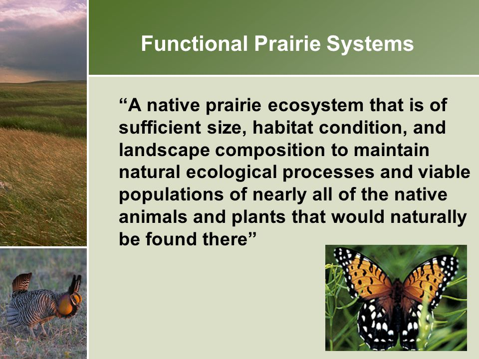 Focusing Prairie Conservation - The Agricultural Matrix - 21.7 million acres total 104 Land type associations Goal: 10% of each LTA in perennial cover protected permanently or under 10-15 year contract