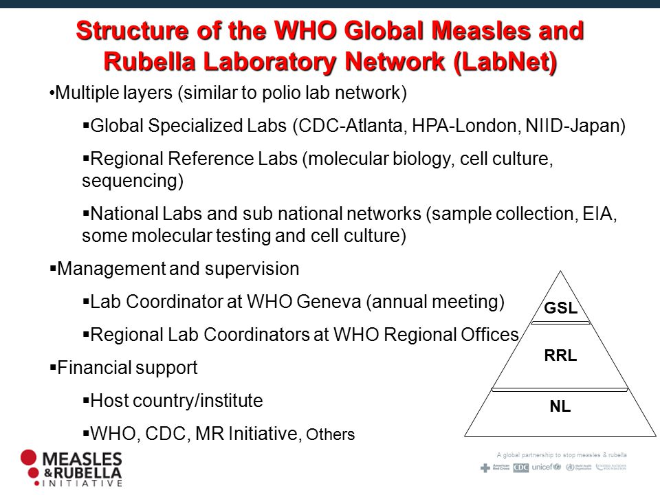 A global partnership to stop measles & rubella NL RRL GSL Multiple layers (similar to polio lab network)  Global Specialized Labs (CDC-Atlanta, HPA-London, NIID-Japan)  Regional Reference Labs (molecular biology, cell culture, sequencing)  National Labs and sub national networks (sample collection, EIA, some molecular testing and cell culture)  Management and supervision  Lab Coordinator at WHO Geneva (annual meeting)  Regional Lab Coordinators at WHO Regional Offices  Financial support  Host country/institute  WHO, CDC, MR Initiative, Others Structure of the WHO Global Measles and Rubella Laboratory Network (LabNet)