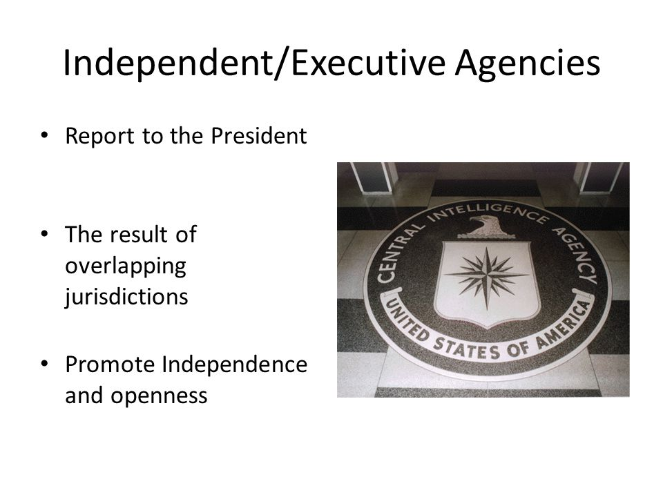 Independent/Executive Agencies Report to the President The result of overlapping jurisdictions Promote Independence and openness