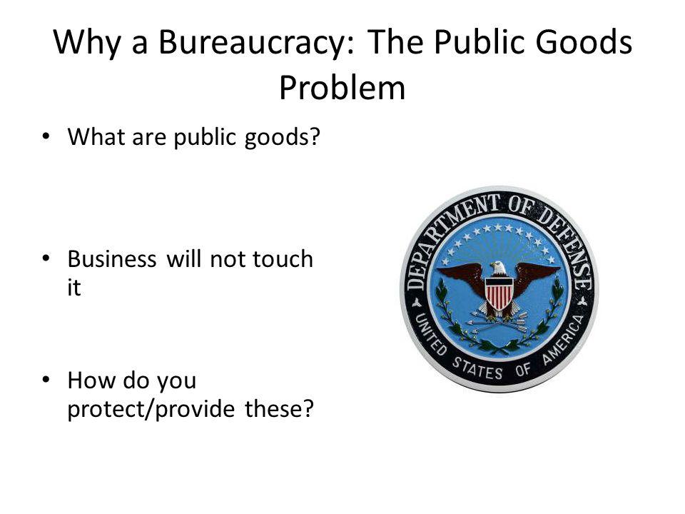 Why a Bureaucracy: The Public Goods Problem What are public goods.