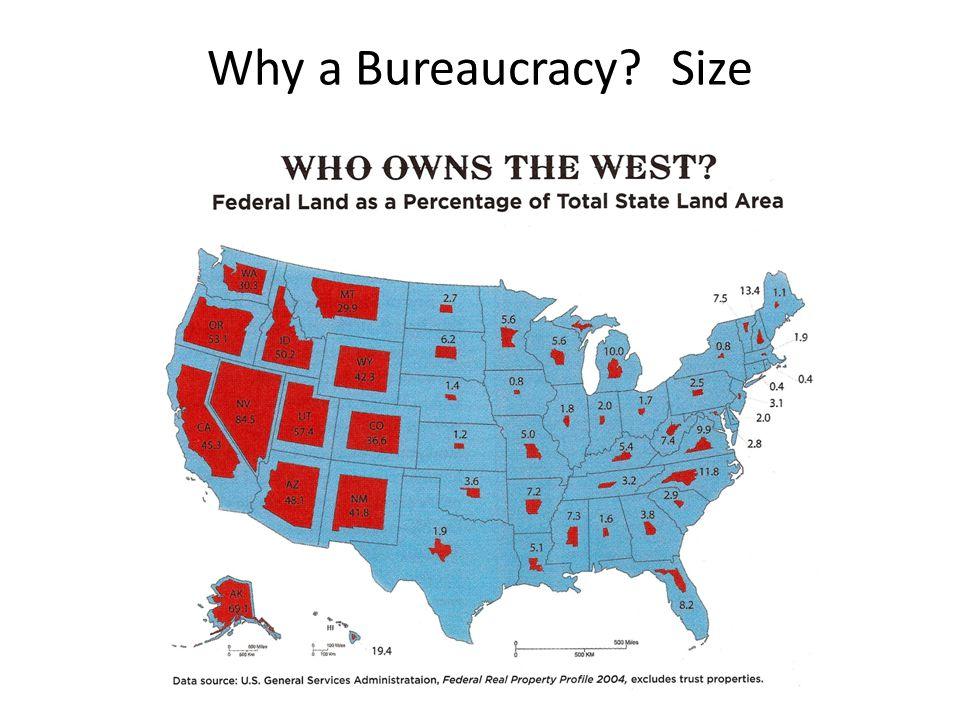 Why a Bureaucracy? Size