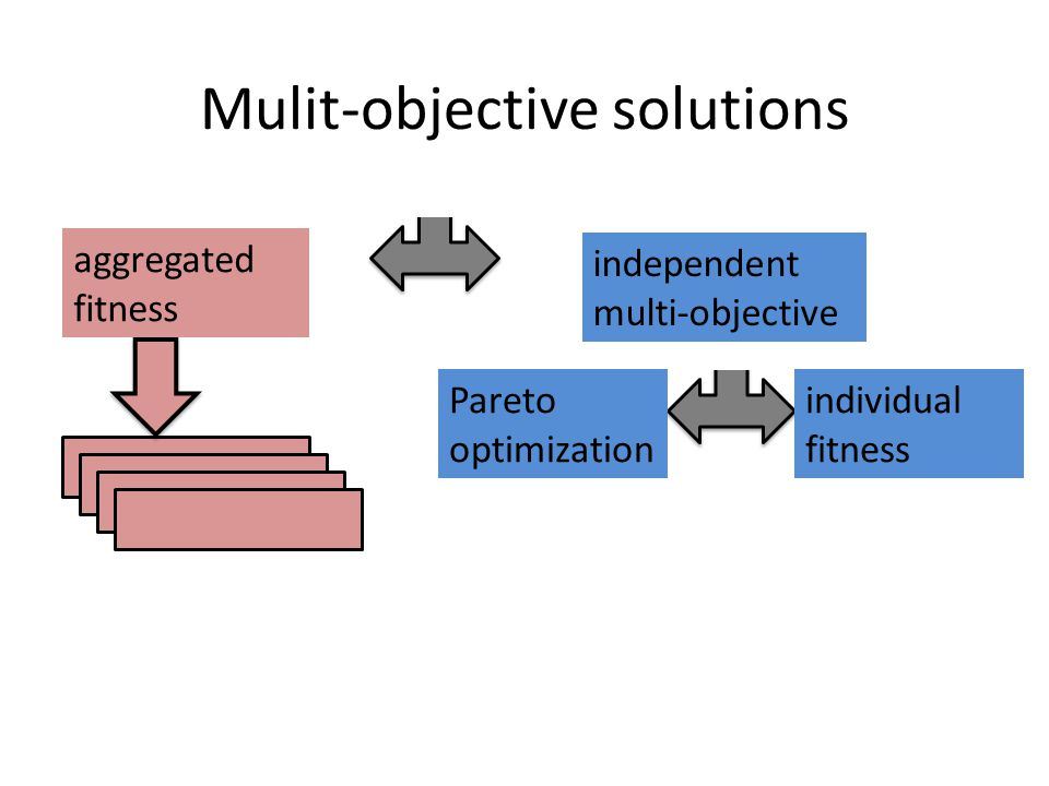 independent multi-objective optimization Pareto optimization individual fitness