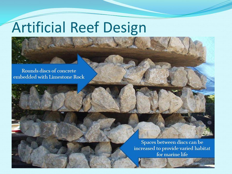 Artificial Reef Design