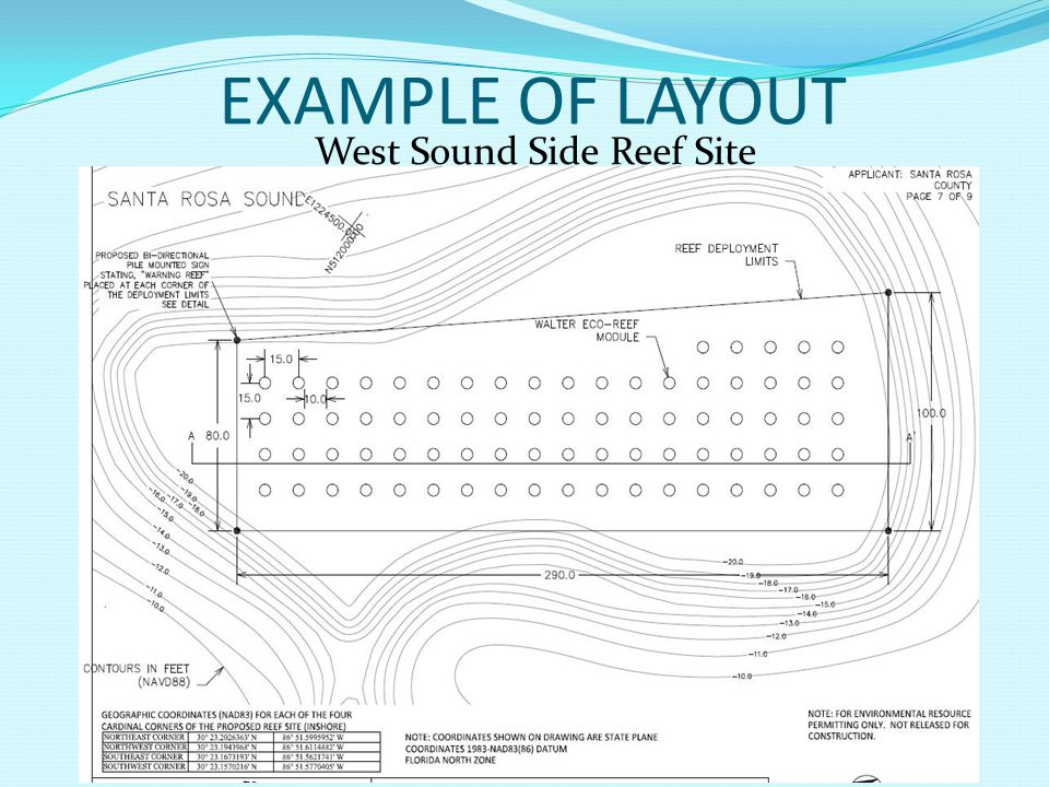 West Sound Side Reef Site EXAMPLE OF LAYOUT
