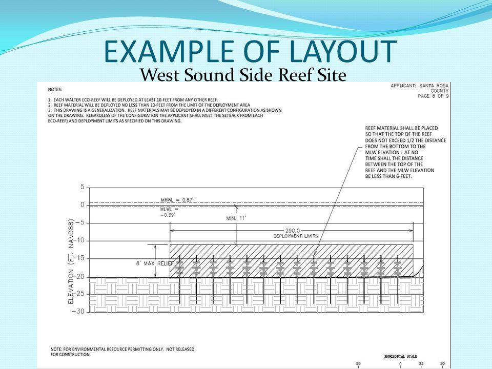 West Sound Side Reef Site