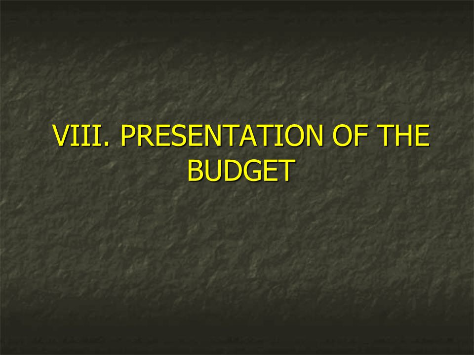 VIII. PRESENTATION OF THE BUDGET