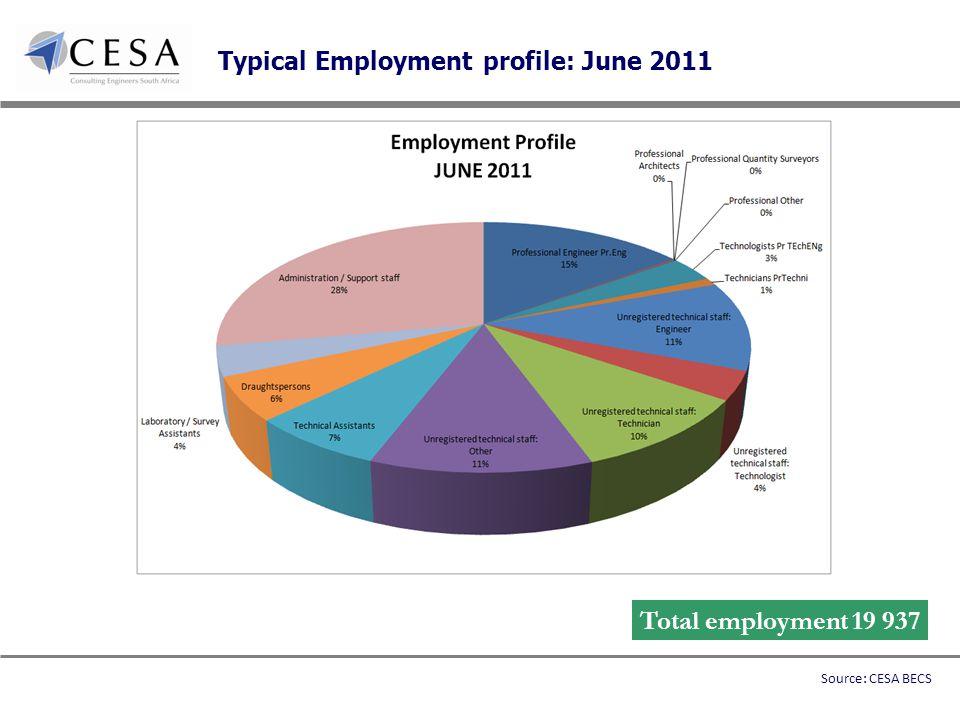 Typical Employment profile: June 2011 Total employment 19 937 Source: CESA BECS