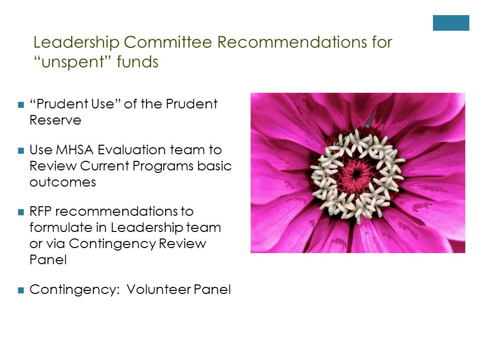 Leadership Committee Recommendations for unspent funds Prudent Use of the Prudent Reserve Use MHSA Evaluation team to Review Current Programs basic outcomes RFP recommendations to formulate in Leadership team or via Contingency Review Panel Contingency: Volunteer Panel