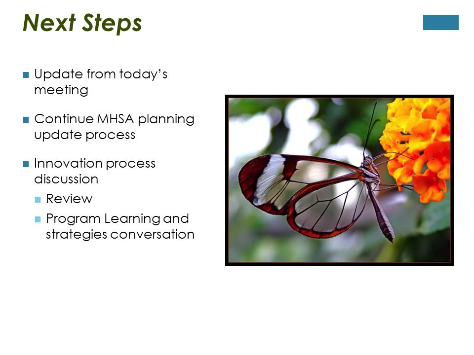Next Steps Update from today's meeting Continue MHSA planning update process Innovation process discussion Review Program Learning and strategies conversation