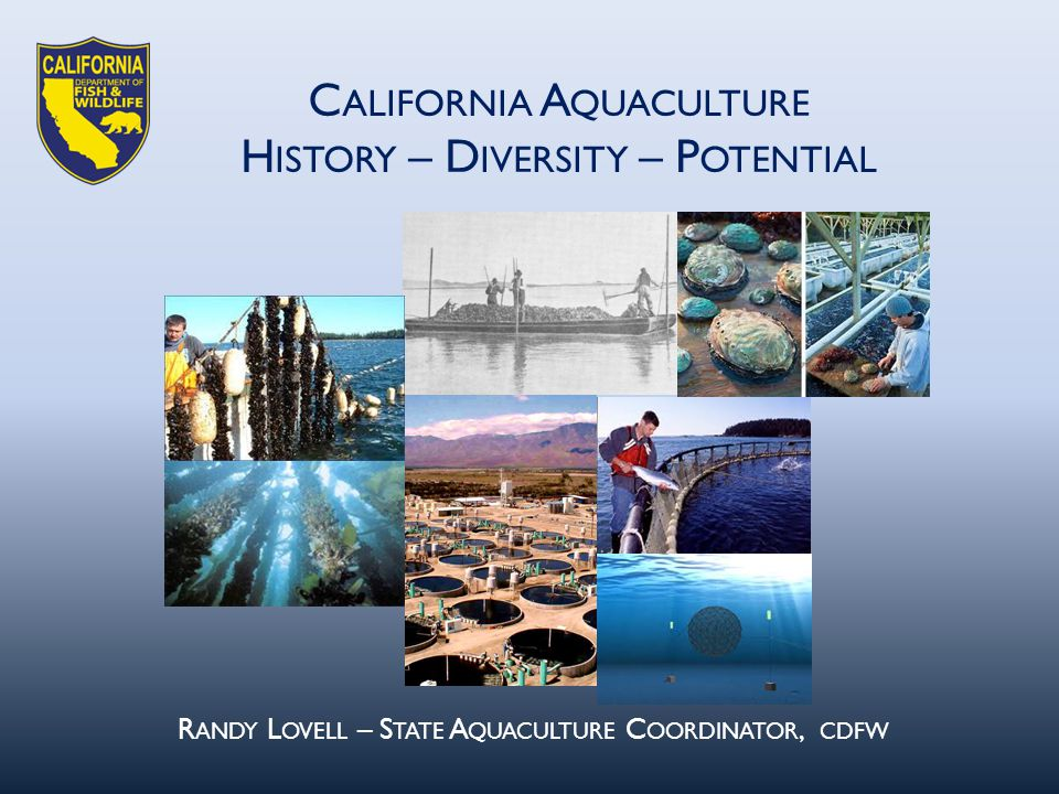 C ALIFORNIA A QUACULTURE H ISTORY – D IVERSITY – P OTENTIAL R ANDY L OVELL – S TATE A QUACULTURE C OORDINATOR, CDFW