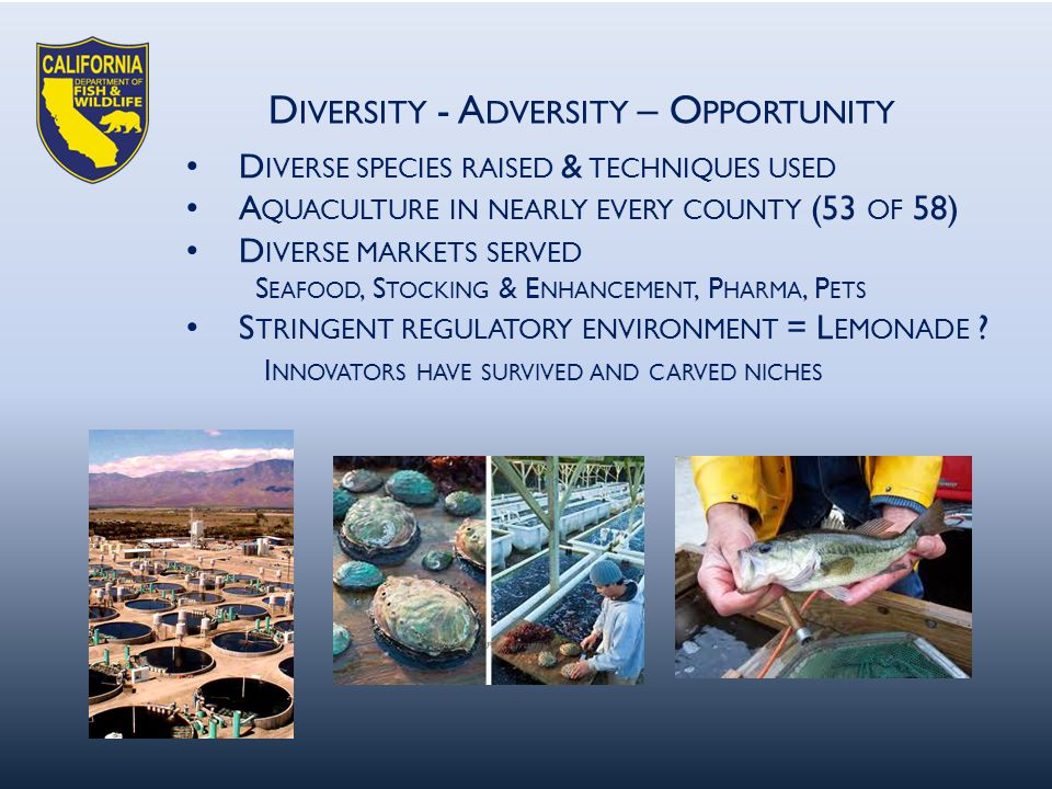 D IVERSITY - A DVERSITY – O PPORTUNITY D IVERSE SPECIES RAISED & TECHNIQUES USED A QUACULTURE IN NEARLY EVERY COUNTY (53 OF 58) D IVERSE MARKETS SERVED S EAFOOD, S TOCKING & E NHANCEMENT, P HARMA, P ETS S TRINGENT REGULATORY ENVIRONMENT = L EMONADE .