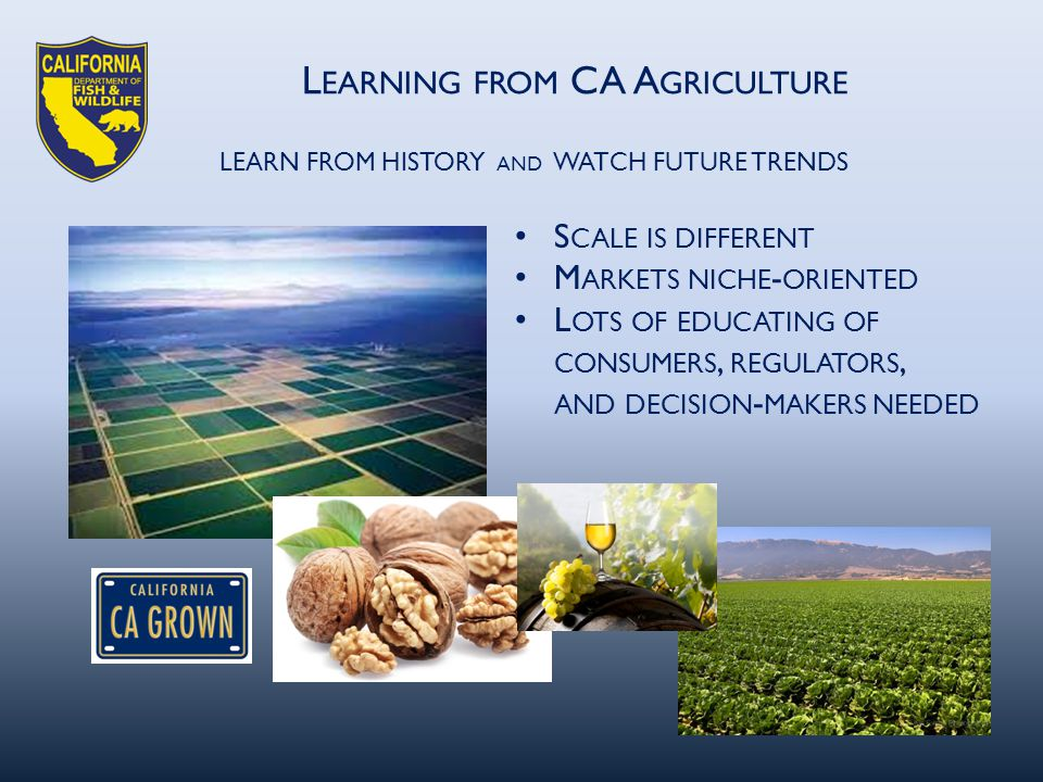 L EARNING FROM CA A GRICULTURE LEARN FROM HISTORY AND WATCH FUTURE TRENDS S CALE IS DIFFERENT M ARKETS NICHE - ORIENTED L OTS OF EDUCATING OF CONSUMERS, REGULATORS, AND DECISION - MAKERS NEEDED