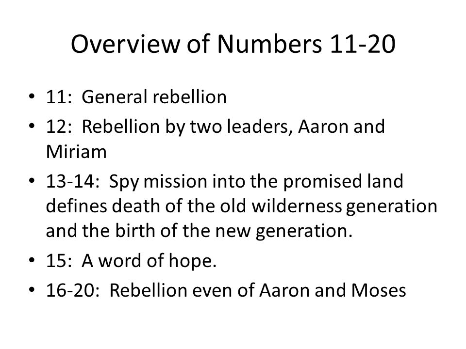 Similarity to the Rebellion in Exodus EXODUS – Before Sinai Miriam's song of praise (15:20-21) complaint about water, bitter water made sweet, the LORD heals (15:22-26) manna/ quail— 16 Water from the rock—17:1- 7 leaders appointed to ease Moses' burdens—18 Israel attacks Amalek and is victorious – 17:8-16 NUMBERS—After Sinai Miriam and Aaron rebel— 12 unspecified complaint— angry fire of the LORD kills—11:1-3 manna/ quail—11:4-15, 31-35 Water from the rock—20:1- 13 leaders appointed to ease Moses' burdens 11:16- 30 Israel attacks Amalek and is defeated—14:39-45