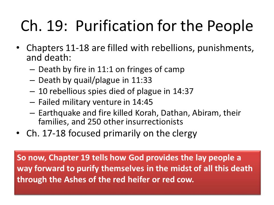 Water and blood as purification have ancient roots in Numbers 19 This is the only ritual with such strict requirements for burning the animal in total, including its blood.