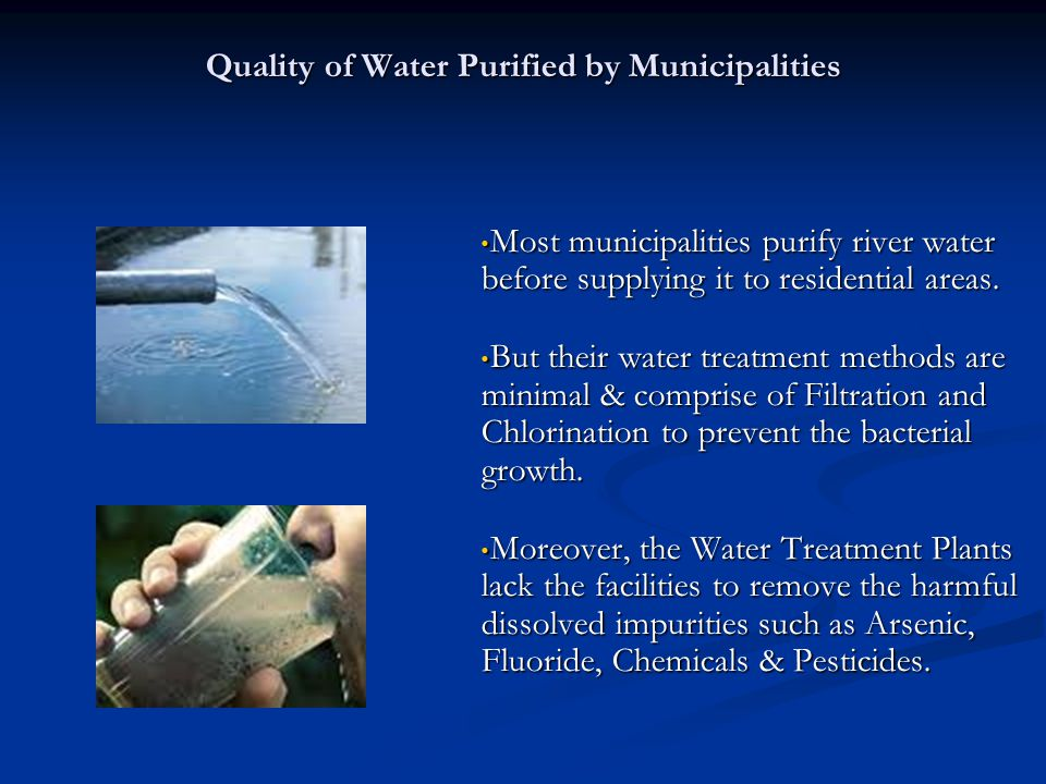 Quality of Water Purified by Municipalities Most municipalities purify river water before supplying it to residential areas.