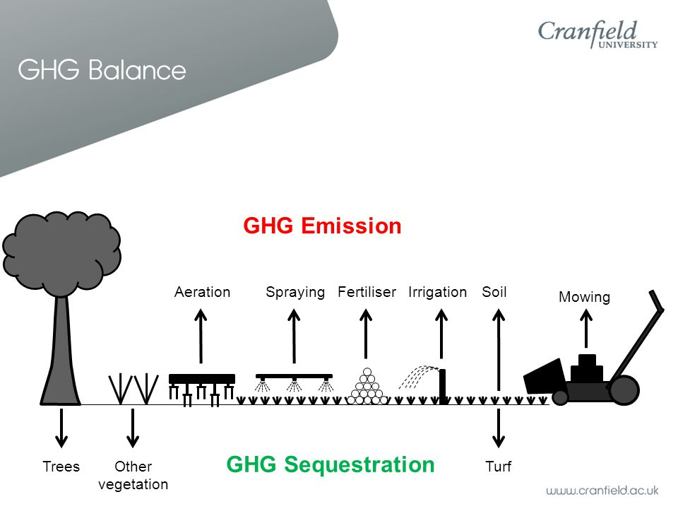 GHG Balance Mowing IrrigationFertiliserSpraying Trees Other vegetation Turf SoilAeration GHG Emission GHG Sequestration