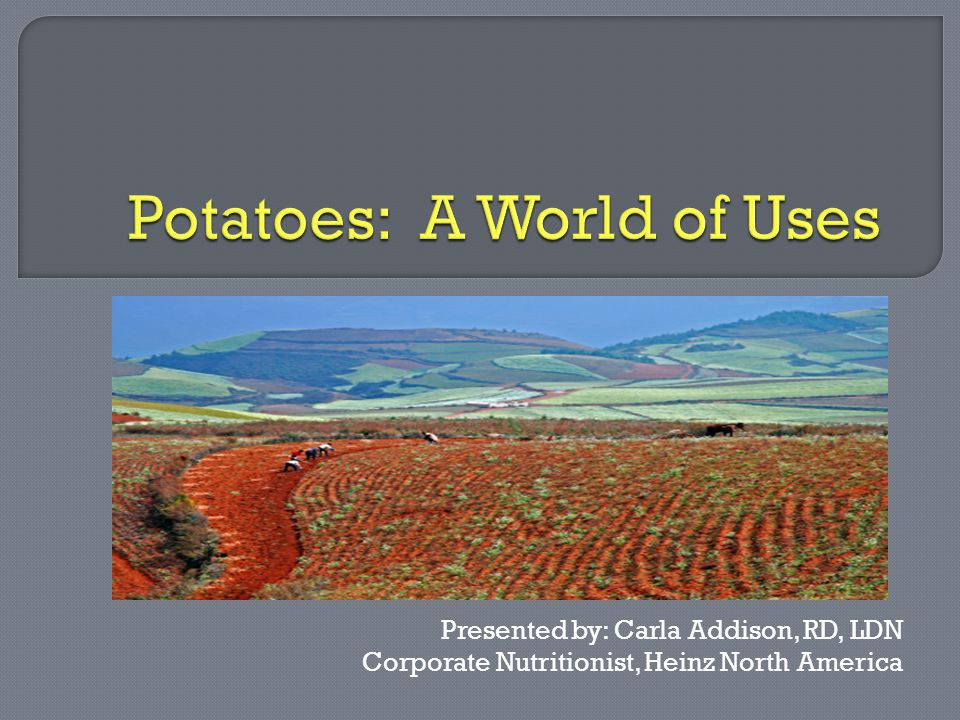  Popularity of Potatoes United States Global Cost of Production  Varieties Starchy qualities Colors and textures Healthy benefits  Dining with Potatoes Convenient and Creative recipes Tips for the public